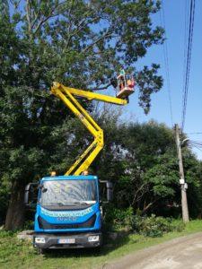 Nebezpečný orez stromu vo výške na plošine v blízkosti elektrického vedenia - Ovoarb, Peter Švidroň